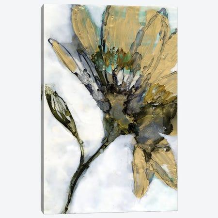 Flower Alloy I Canvas Print #JGO1171} by Jennifer Goldberger Art Print
