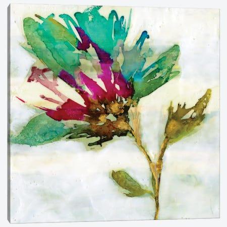 Fuchsia Splash II Canvas Print #JGO1186} by Jennifer Goldberger Canvas Print