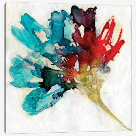 Splashed Flower II Canvas Print #JGO1210} by Jennifer Goldberger Canvas Artwork