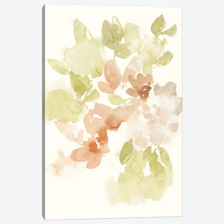 The Softest Petals I Canvas Print #JGO1211} by Jennifer Goldberger Canvas Wall Art
