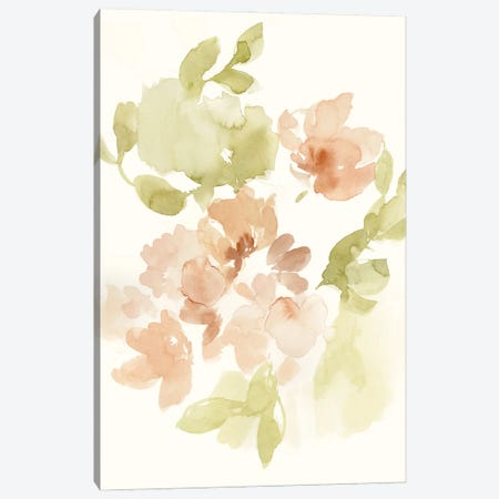 The Softest Petals II Canvas Print #JGO1212} by Jennifer Goldberger Canvas Art