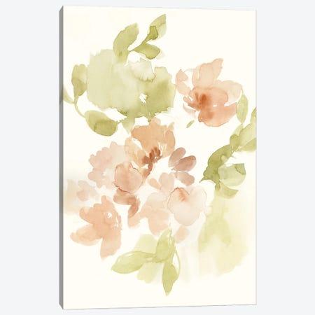 The Softest Petals II Canvas Print #JGO1212} by Jennifer Goldberger Canvas Art
