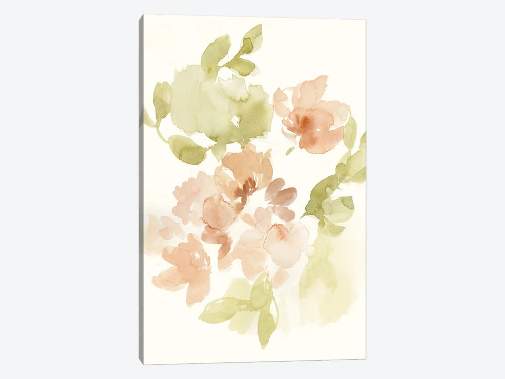 The Softest Petals II by Jennifer Goldberger 1-piece Canvas Print