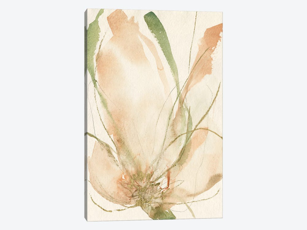 Petal Sketches II by Jennifer Goldberger 1-piece Art Print