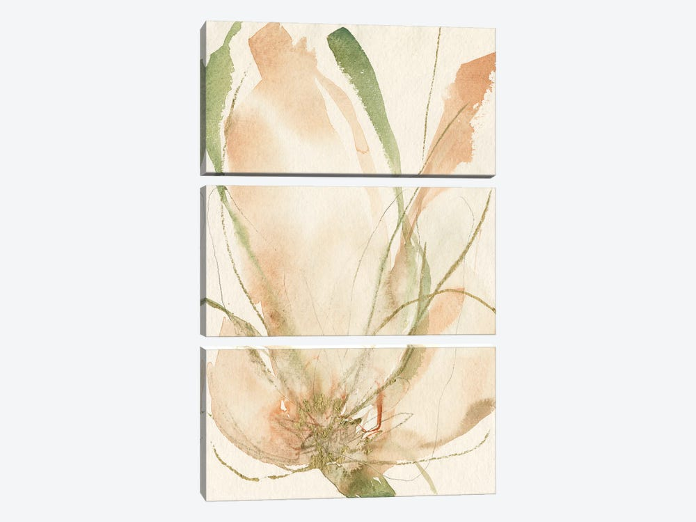 Petal Sketches II by Jennifer Goldberger 3-piece Art Print