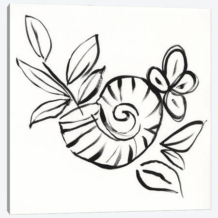 Shell Scrawl I Canvas Print #JGO1260} by Jennifer Goldberger Canvas Art Print