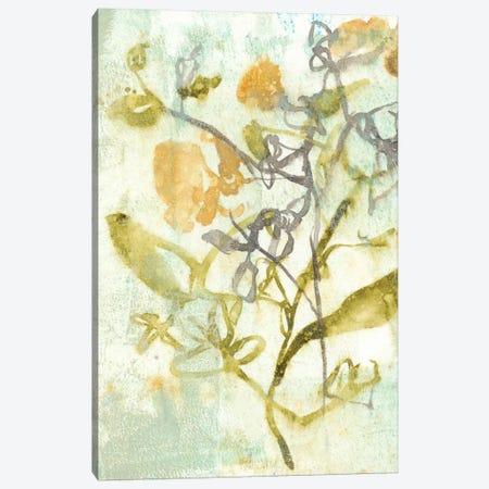 Washed Floral II Canvas Print #JGO129} by Jennifer Goldberger Canvas Art