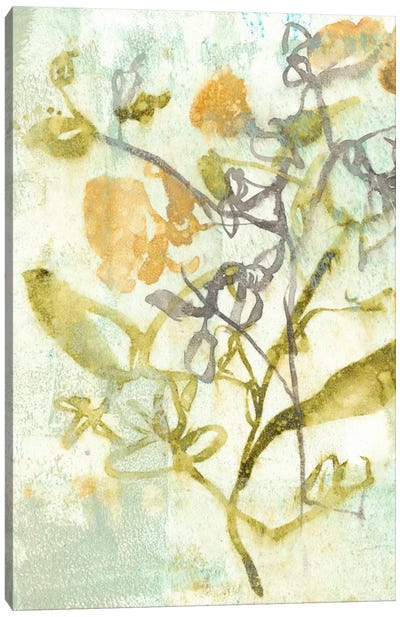 Washed Floral II Canvas Print #JGO129