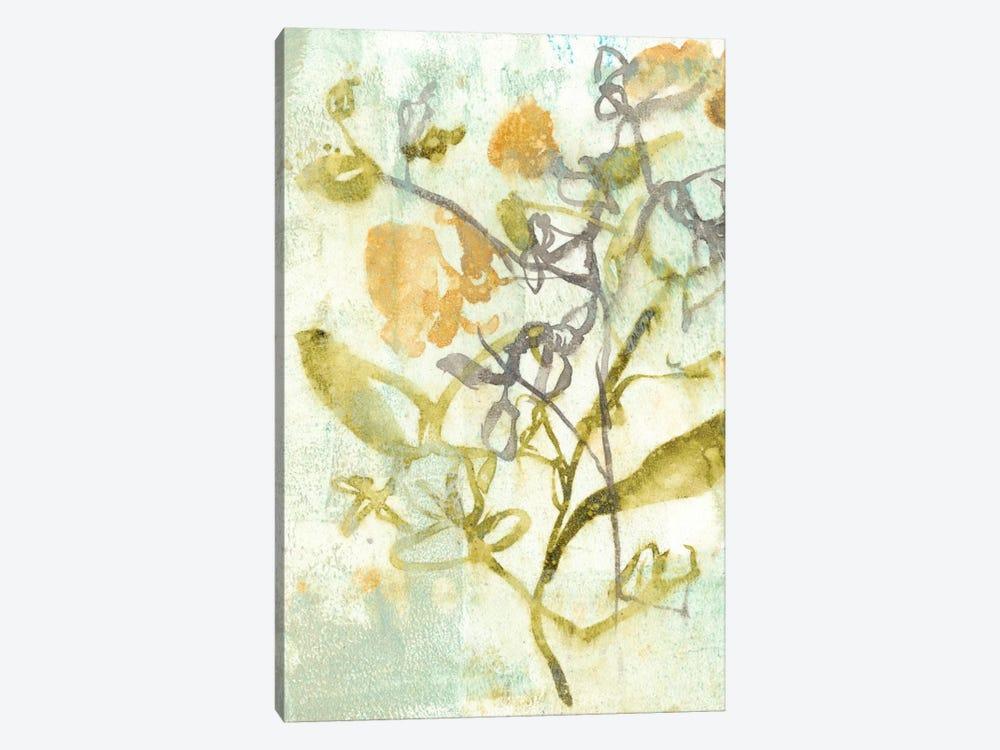 Washed Floral II by Jennifer Goldberger 1-piece Canvas Artwork