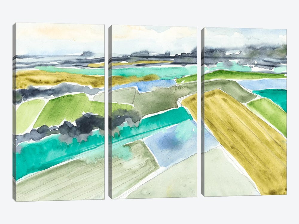 Watercolor Field I by Jennifer Goldberger 3-piece Canvas Wall Art