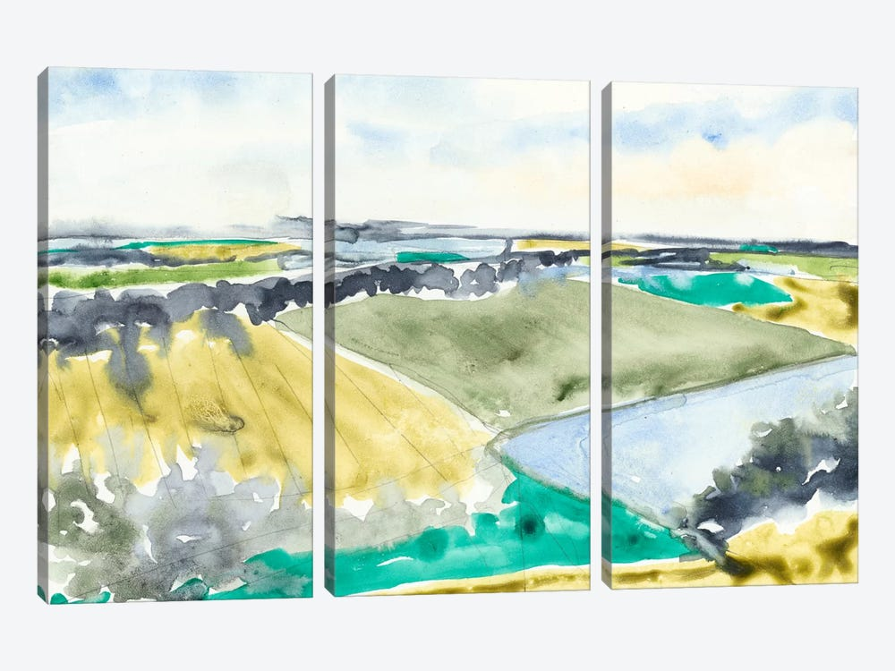 Watercolor Field II by Jennifer Goldberger 3-piece Canvas Art Print