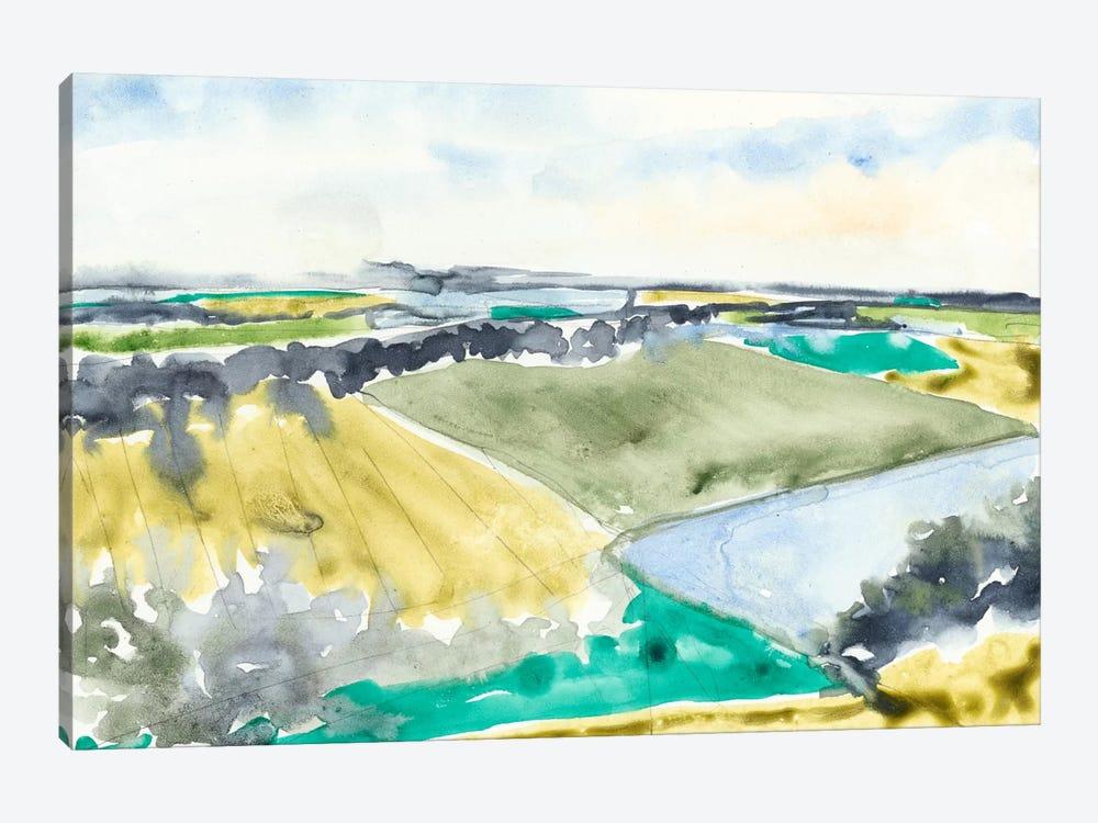 Watercolor Field II by Jennifer Goldberger 1-piece Canvas Print