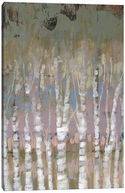 Pastel Birchline I Canvas Art Print