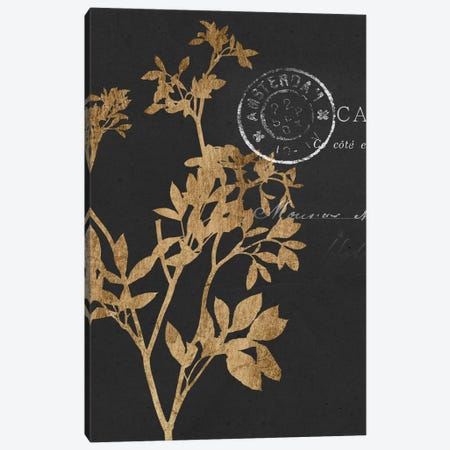 Golden Leaves III Canvas Print #JGO168} by Jennifer Goldberger Canvas Artwork