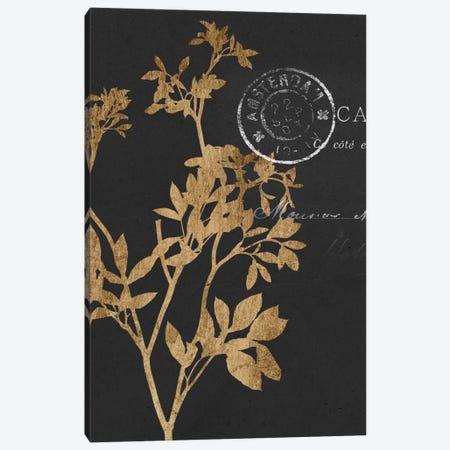 Golden Leaves III Canvas Print #JGO168} by Jennifer Goldberger Canvas Artwork