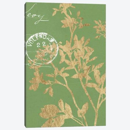 Greenery Leaves II Canvas Print #JGO171} by Jennifer Goldberger Art Print