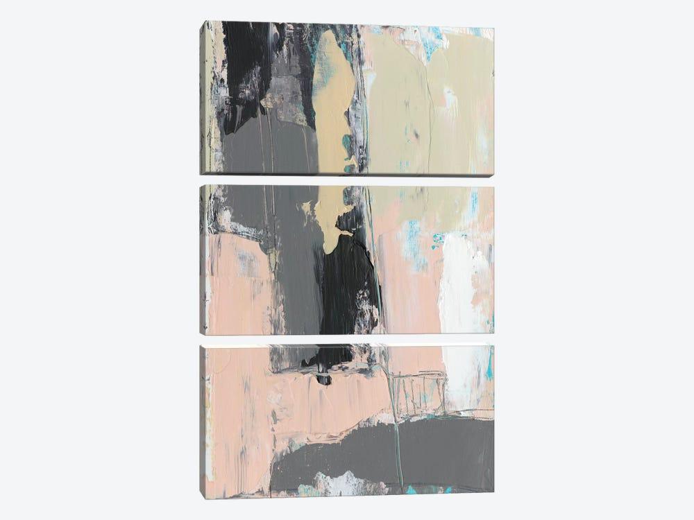 Pink-A-Boo III by Jennifer Goldberger 3-piece Canvas Art Print