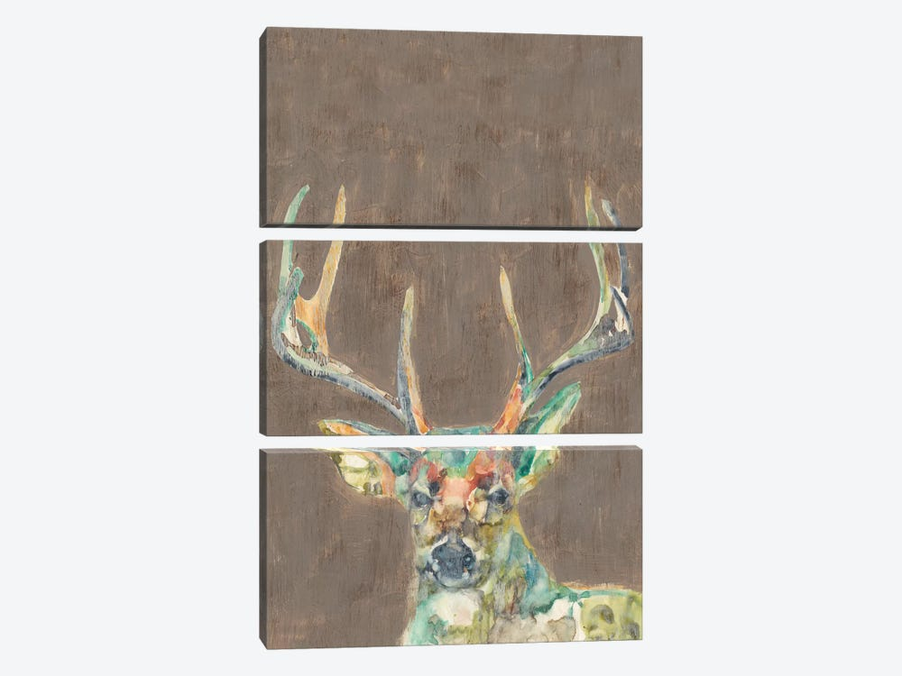 Rustic Wildlife I by Jennifer Goldberger 3-piece Canvas Art Print