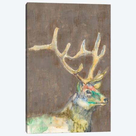 Rustic Wildlife II Canvas Print #JGO232} by Jennifer Goldberger Canvas Art