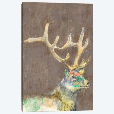 Rustic Wildlife II Canvas Print #JGO232} by Jennifer Goldberger Canvas Art
