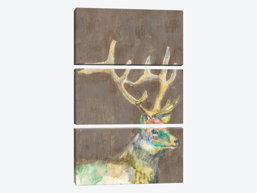 Rustic Wildlife II by Jennifer Goldberger 3-piece Canvas Artwork