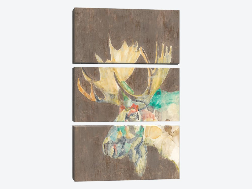 Rustic Wildlife IV by Jennifer Goldberger 3-piece Canvas Wall Art