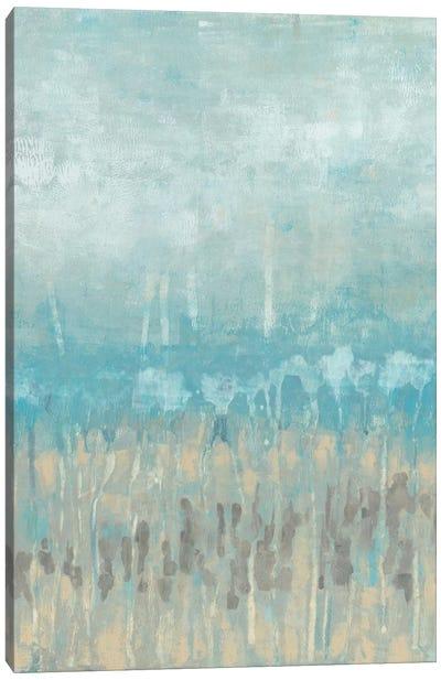 Coastline Abstraction II Canvas Print #JGO24