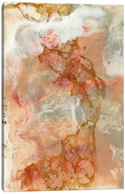 Coral Lace I Canvas Print #JGO27