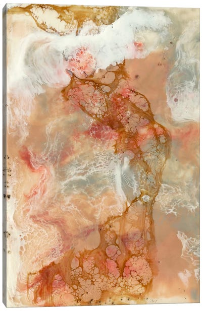 Coral Lace I Canvas Art Print