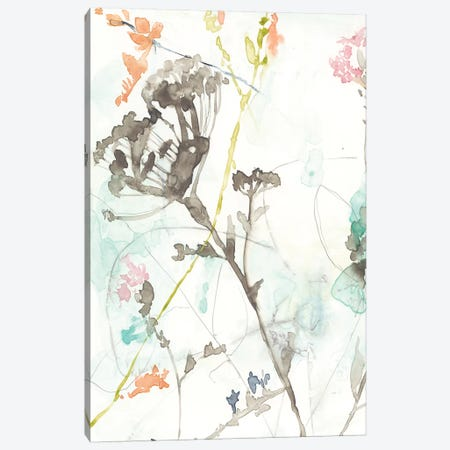 Wildflower Breath I Canvas Print #JGO285} by Jennifer Goldberger Canvas Wall Art