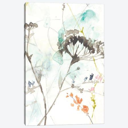 Wildflower Breath II Canvas Print #JGO286} by Jennifer Goldberger Canvas Wall Art