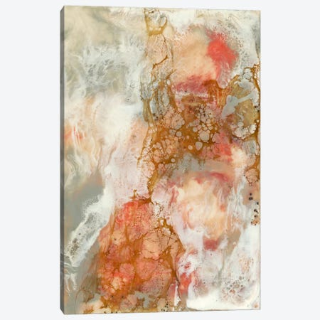 Coral Lace II Canvas Print #JGO28} by Jennifer Goldberger Canvas Art
