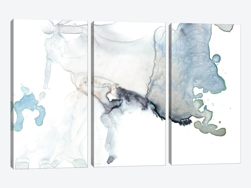 Bloom Cloud II by Jennifer Goldberger 3-piece Canvas Art