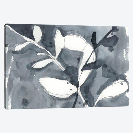 Branch Contours I Canvas Print #JGO293} by Jennifer Goldberger Canvas Artwork
