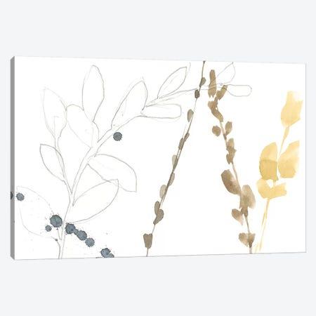 Branch Contours II 3-Piece Canvas #JGO294} by Jennifer Goldberger Canvas Art Print
