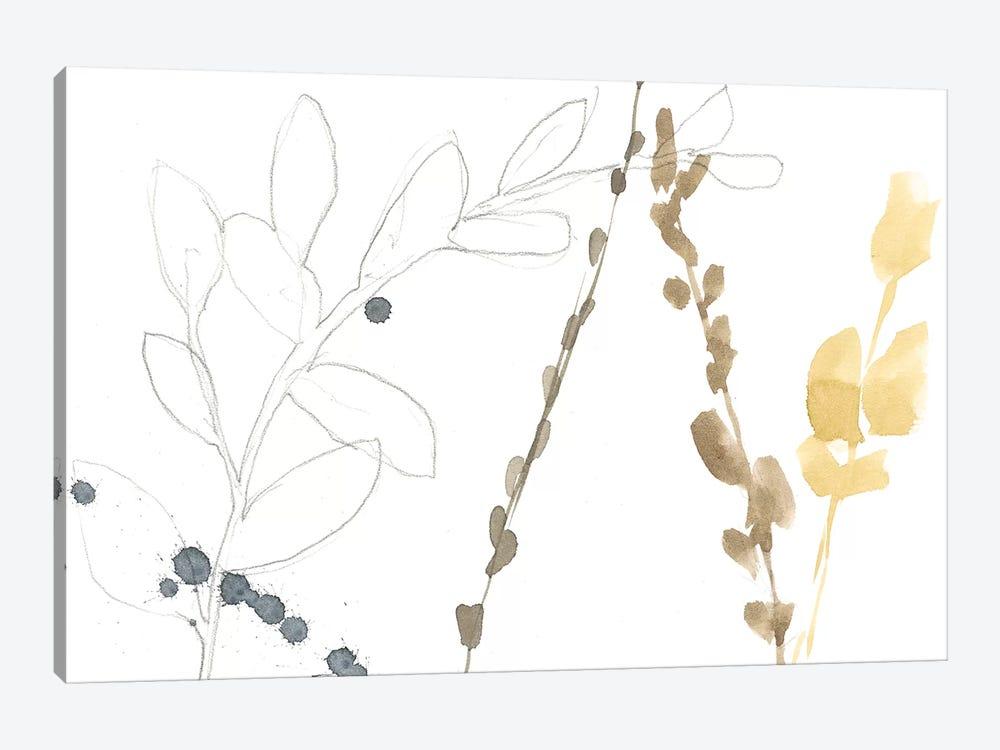 Branch Contours II by Jennifer Goldberger 1-piece Canvas Art
