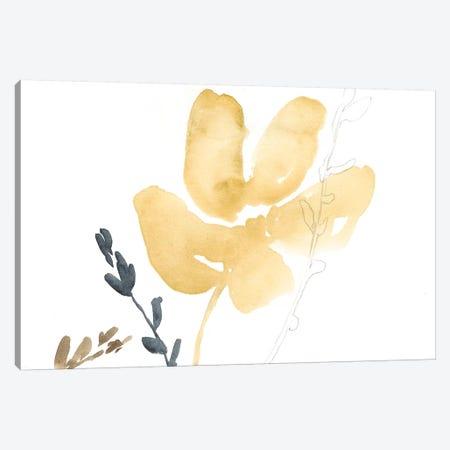 Branch Contours III Canvas Print #JGO295} by Jennifer Goldberger Canvas Print