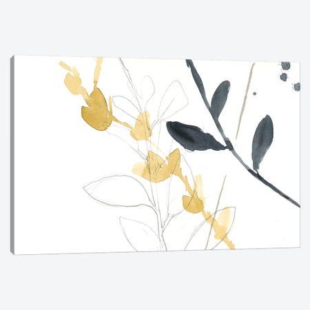 Branch Contours VII Canvas Print #JGO299} by Jennifer Goldberger Canvas Wall Art