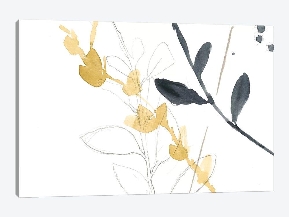 Branch Contours VII by Jennifer Goldberger 1-piece Canvas Art Print