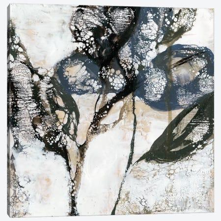 Crackled Stems I Canvas Print #JGO29} by Jennifer Goldberger Canvas Art
