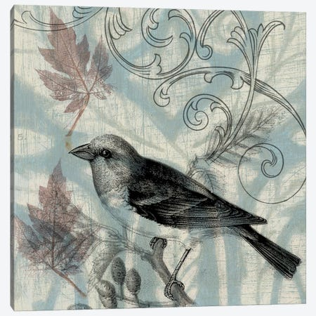 Autumn Songbird II Canvas Print #JGO2} by Jennifer Goldberger Art Print