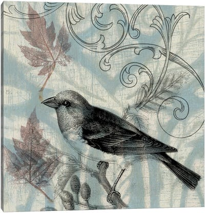 Autumn Songbird II Canvas Art Print