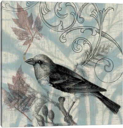 Autumn Songbird II Canvas Art Print