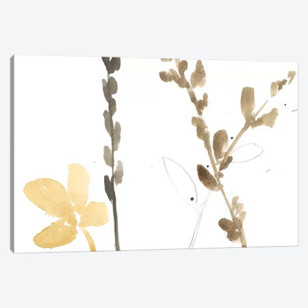 Branch Contours VIII Canvas Print #JGO300} by Jennifer Goldberger Canvas Wall Art