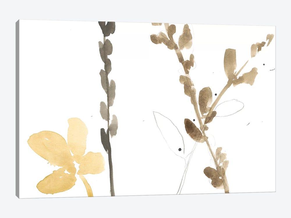 Branch Contours VIII by Jennifer Goldberger 1-piece Canvas Art