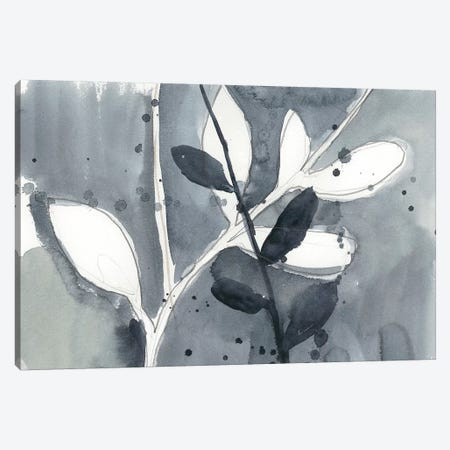 Branch Contours IX Canvas Print #JGO301} by Jennifer Goldberger Canvas Artwork