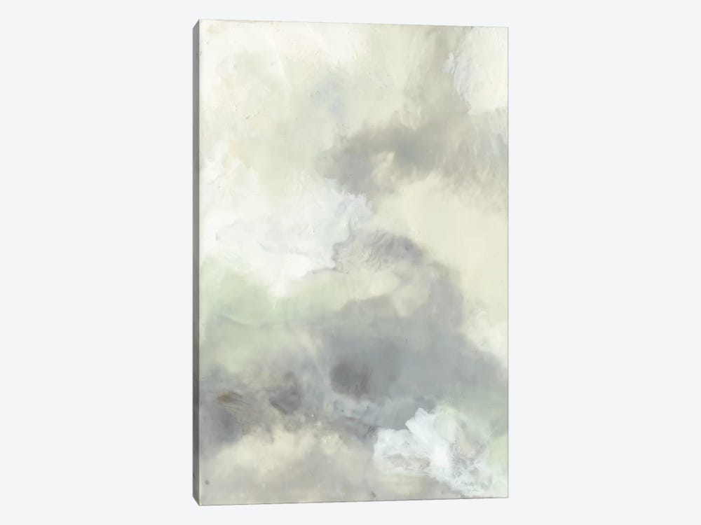 Cloud Impressions I by Jennifer Goldberger 1-piece Canvas Artwork