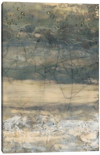 Earthen Lines II Canvas Art Print