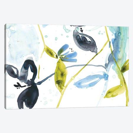 Hanging Garden II Canvas Print #JGO314} by Jennifer Goldberger Canvas Art