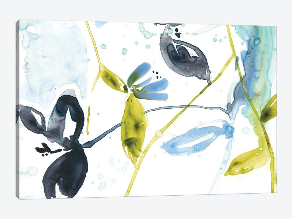 Hanging Garden II by Jennifer Goldberger 1-piece Canvas Art Print